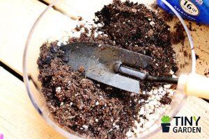 Trộn đất trồng sen đá