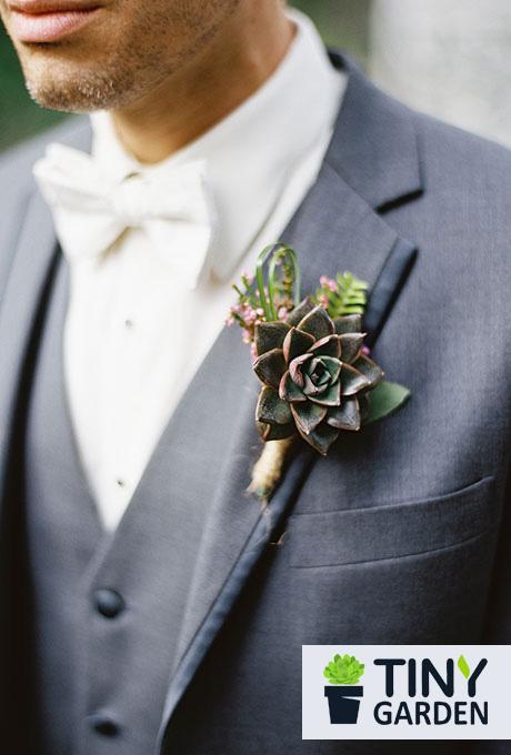 Phụ kiện cưới