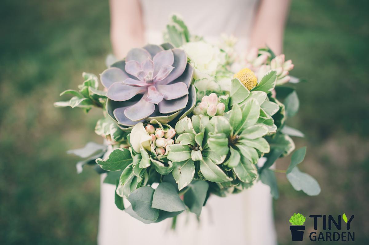 Phong cách hoa cưới Rustic với hoa sen đá độc đáo