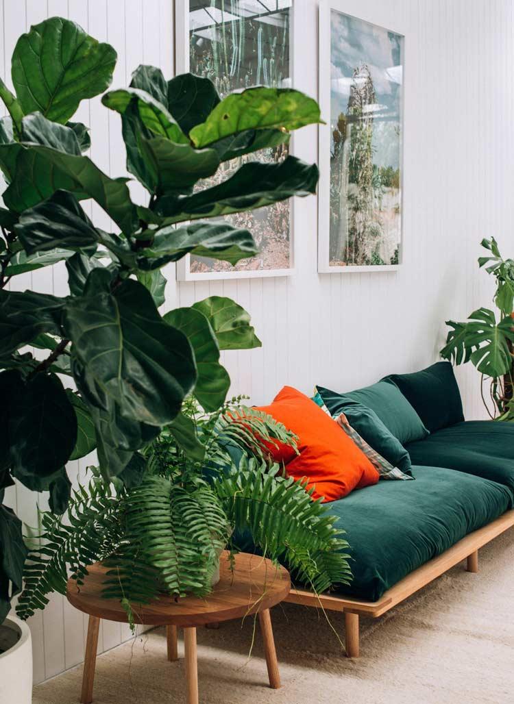 Để thêm 1vài mảng xanh cho phòng khách, bạn không chỉ cần 1 chiếc ghế đệm màu xanh rêu là đủ mà còn cần đặt thêm vài chậu cây nhỏ xinh